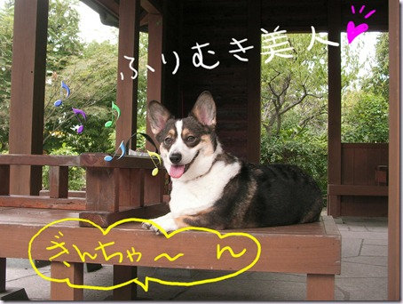 011-furimuki